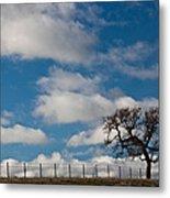 Tree And Fence On A Landscape, Santa Metal Print
