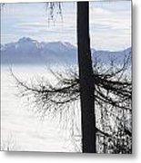 Tree And Fog Metal Print