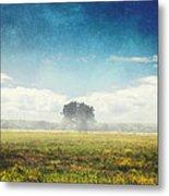 Tree And Meadow Metal Print