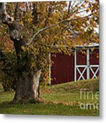 Tree And Red Barn Metal Print