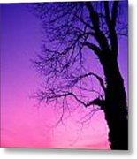 Tree At Sunrise Metal Print