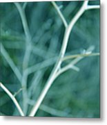 Tree Branches Abstract Teal Metal Print