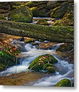 Tree Bridge In The Smokies Metal Print