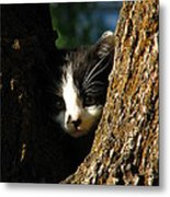 Tree Cat Metal Print