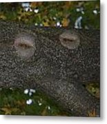 Tree Face 1 Metal Print