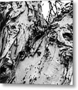Tree Face No Color Metal Print by Lisa Cortez