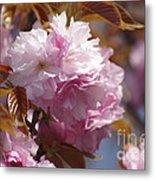 Tree Flower 01 Metal Print