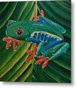 Tree Frog Koi Metal Print