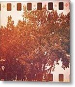 Tree Grunge Vintage Analog Film Metal Print