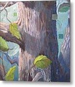 Tree Hugger Metal Print by Paula Marsh