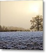 Tree In A Field On A Snowy Day Metal Print