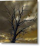 Tree In A Storm Metal Print
