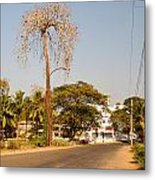 Tree In Goa Metal Print