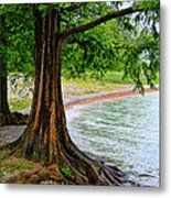 Tree In Paradise Metal Print