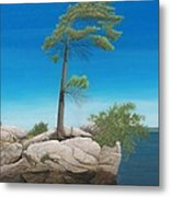 Tree In Rock Metal Print