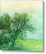 Tree In The Flint Hills Metal Print