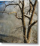 Tree In Winter Metal Print by Lois Bryan