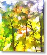Tree Leaves Metal Print