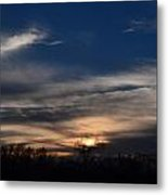 Tree Light Metal Print by Kelly Kitchens