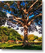 Tree Of Joy. Mauritius Metal Print