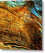 Tree Of Life Number 8 Metal Print by Peter Cutler