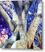 Tree Of Life Photography On Canvas Poster Beautiful Unique Fine Art Prints For Your Home Decoration Metal Print