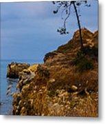 Tree On A Cliff II Metal Print