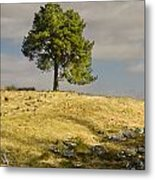 Tree On A Hill Vertical Metal Print