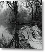 Tree Planted By The Rivers Metal Print