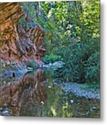 Tree Reflection Metal Print