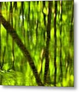 Tree Reflections Metal Print by Adam Jewell
