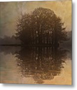 Tree Reflections II Metal Print