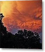 Tree Reflections Skyward 2 Metal Print