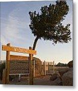 Tree Rock Wyoming Metal Print