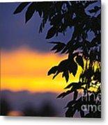 Tree Silhouette Over Sunset Metal Print