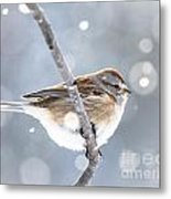 Tree Sparrow In The Snow Metal Print