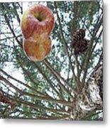Tree Spiral Metal Print