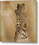 Tree Stump The Forgotten Series 05 Metal Print