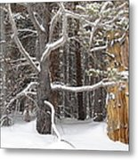 Tree Talk Metal Print