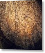 Tree Texture Background Metal Print