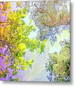 when the tree tops are looking down at me I am feeling little but also very lucky  Metal Print