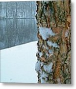 Tree Trunk Bark And River In Snowfall Metal Print
