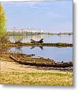 Tree Trunk By The River Metal Print
