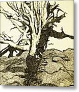 Tree Trunk By The Sea Metal Print