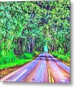 Tree Tunnel Kauai Metal Print