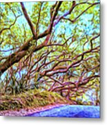 Tree Tunnel Near Isaac Hale Beach Metal Print