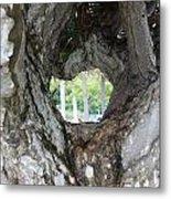 Tree View Metal Print
