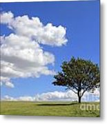 Tree With Clouds Metal Print