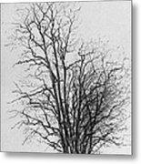 Tree With Figures Metal Print