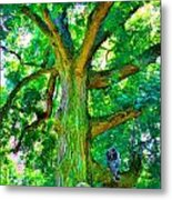 Tree With Owl Gnome And Mushroom Metal Print